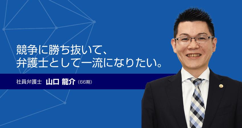 社員弁護士 山口龍介(66期)